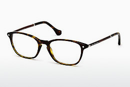 Eyewear Balenciaga BA5017 052 - Brown, Havanna