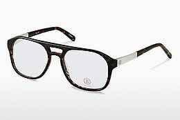 Eyewear Bogner BG506 C - Brown, Havanna