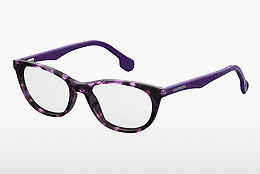 Eyewear Carrera CARRERINO 67 HKZ - Purple, Brown, Havanna