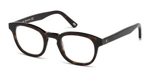 Web Eyewear WE5203 052