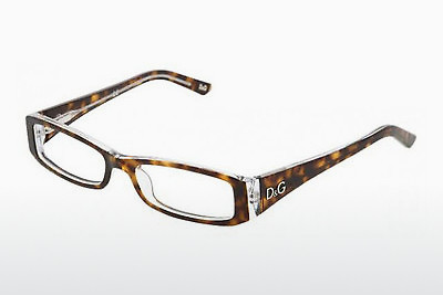 Eyewear D&G INSTITUTIONAL LOGO (DD1179 556) - Brown, Havanna