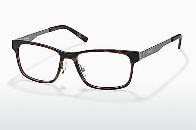 Eyewear Polaroid PLD 1P 007 3Z2 - Brown, Havanna