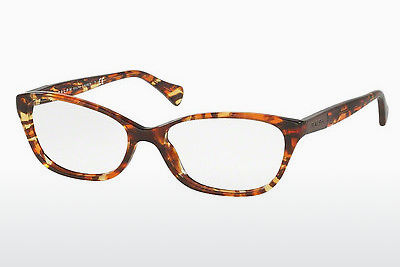 Eyewear Ralph RA7049 1227 - Blue, Green, Brown, Havanna