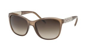 Bvlgari BV8104 111113 BROWN GRADIENTTURTLEDOVE