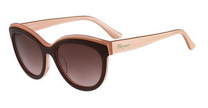 Salvatore Ferragamo SF757S 255 BROWN ROSE