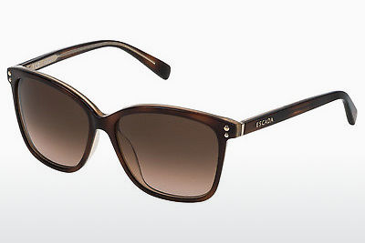 Ophthalmic Glasses Escada SES443 09TA - Brown, Havanna