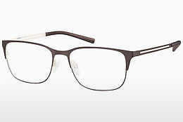 Eyewear Aristar AR16253 535 - Brown