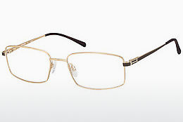 Eyewear Aristar AR16257 501 - Gold