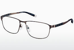 Eyewear Charmant ZT19859 BR - Brown