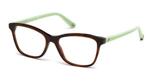 Web Eyewear WE5200 053 havanna blond