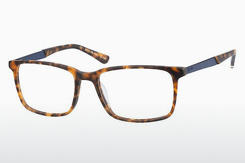 Eyewear Superdry SDO Domenic 102