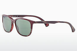 Ophthalmic Glasses Strellson ST4285 200 - Red, Havanna